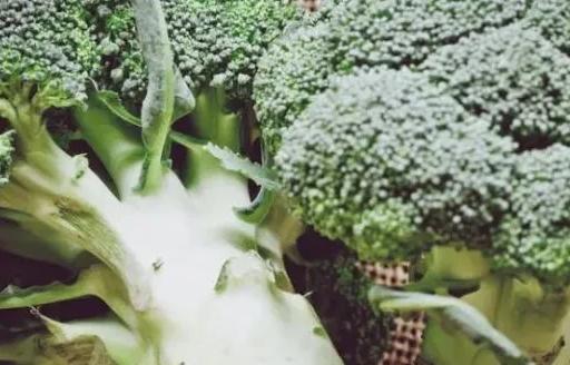 西兰花被誉做蔬菜皇后堪称其中的佼佼者