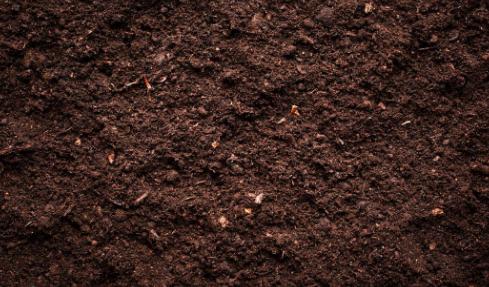有机土壤改良剂可提高土壤养分的利用率