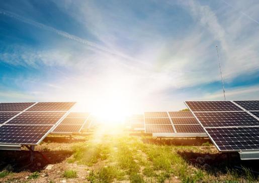 下一代太阳能电池利用细菌将光转化为能量