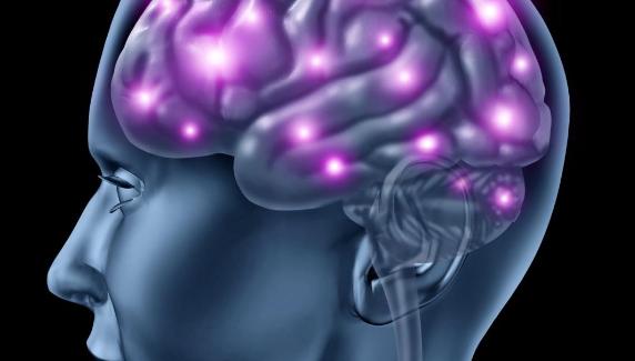 有争议的研究声称人类记忆细胞不会终生生长 但是在成年前就停止再生