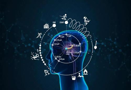 决定大脑中时间的信号因子也是果蝇正常记忆所必需的