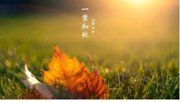 """中医认为秋季天干物燥人体最易感""""燥邪"""