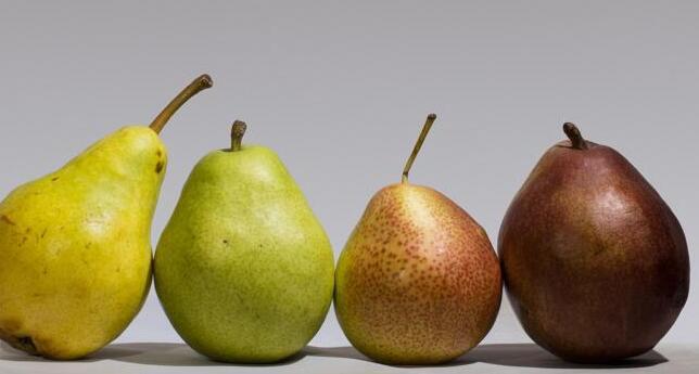 值得深思的食物:尝试秋季健康食品