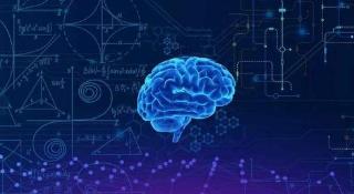 大脑对身体拥有绝对的支配权和话语权