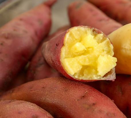 高血压患者适当吃红薯没什么问题