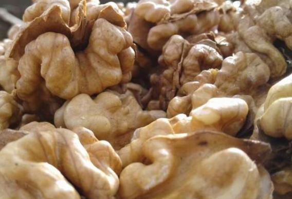 研究表明食用坚果会导致精子DNA功能发生变化