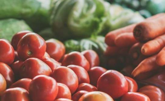 揭示教育与良好饮食之间的联系