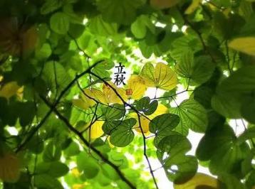 秋季为人体最适宜进补的季节