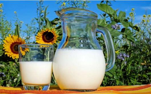 研究表明食用植物蛋白可以延长人类寿命