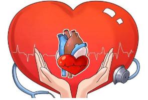目前心血管病死亡占城乡居民总死亡原因的首位