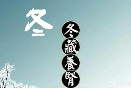 中医认为冬季万物蛰伏闭藏的特性和肾气相通