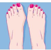 脚被比喻为人体的第二个心脏