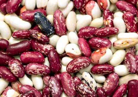 豆类食物是人们在日常生活中常吃的食物之一