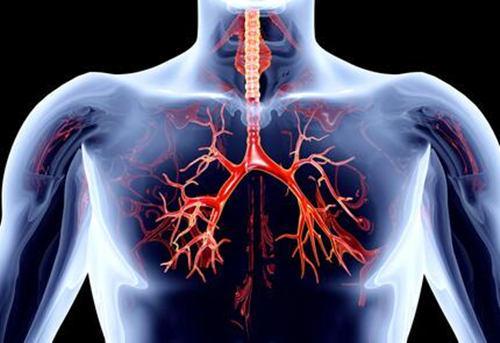 新的测序技术表明健康个体的肺中也存在几种微生物