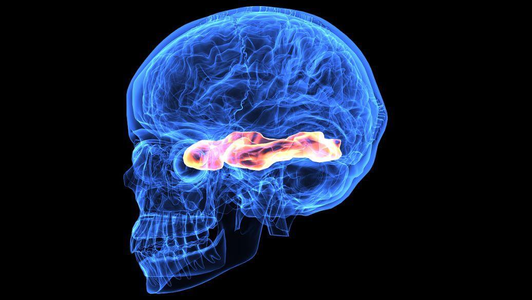 使用AI诊断基于运动障碍的神经系统疾病