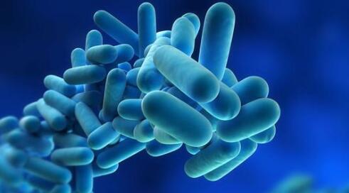 现有药物的新配方被证明对抗药性真菌非常有效