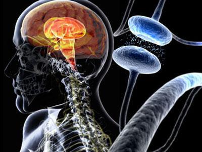 帕金森氏症的发现指出了未来可能的治疗方法