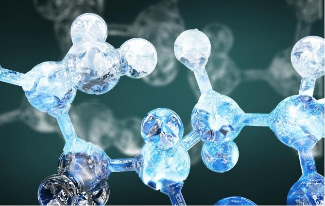 研究表明细胞因子在脊椎动物组织中分布Wnt蛋白