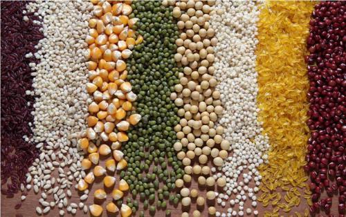 研究呼吁采取紧急气候变化行动以确保全球粮食供应