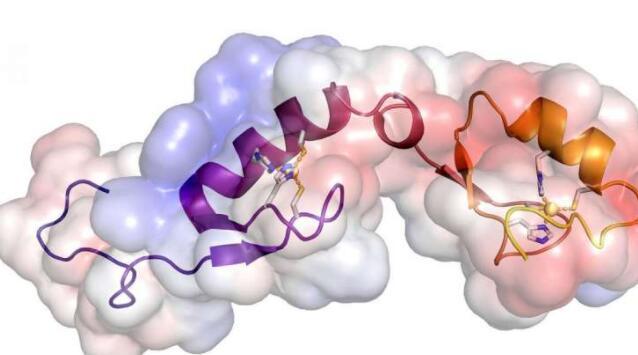 如何驯服不安定的基因组