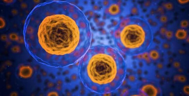 新方法推动了单细胞转录组学技术的发展