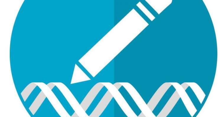 耶鲁大学PNA技术是基因编辑工具包的重要组成部分