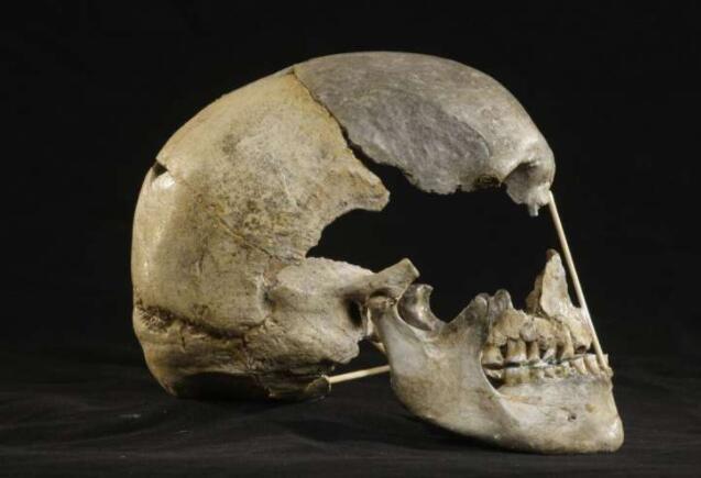 尼安德特人的祖先确定了最古老的现代人类基因组