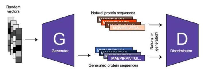 ProteinGAN:生成对抗性网络