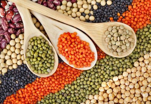 种植更多豆类可能是一种对欧洲农业而言更具可持续性和营养价值的方法