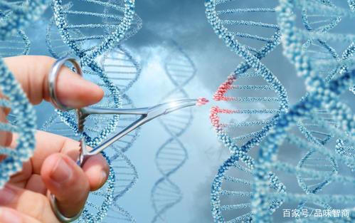基因疗法有望治疗小鼠罕见的眼病