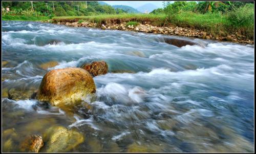 不起眼的木片如何清洁全球范围的水