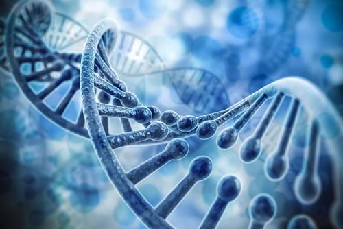 新的CRISPR技术提供了无与伦比的表观遗传控制