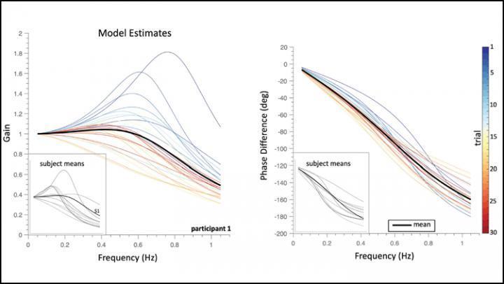 大脑的听觉系统会跟踪移动声音的速度和位置
