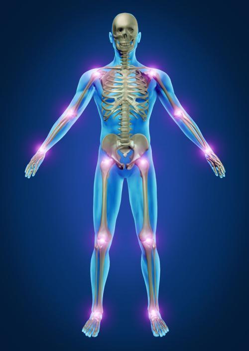如何提高地毯抗前列腺癌和相关骨生长的功效