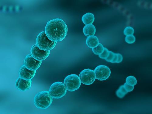 B组链球菌幸存的婴儿更有可能需要特殊的教育支持