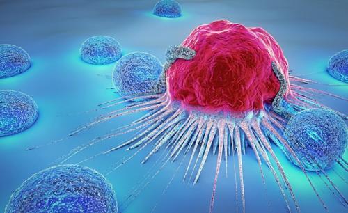 新分析消除了对癌症复发的恐惧