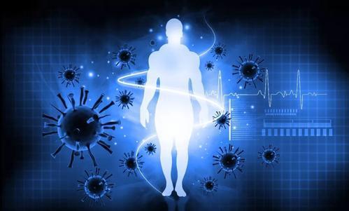免疫系统可能对孕妇构成最大风险