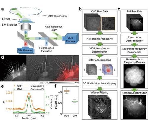 光学衍射层析成像的公认局限性是由于折射率的复杂分布