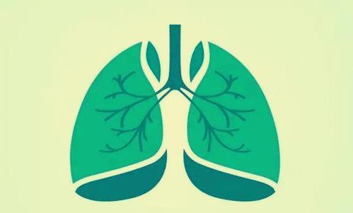结核病免疫反应发现可显着减少疾病危害