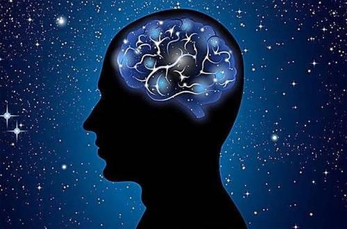 研究人员使用类鳗鱼蛋白来控制大脑
