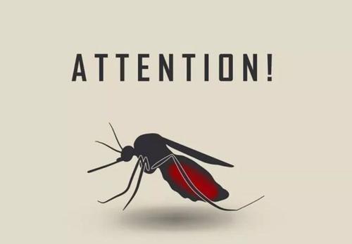 科学家设计了新的药物化合物来遏制疟疾