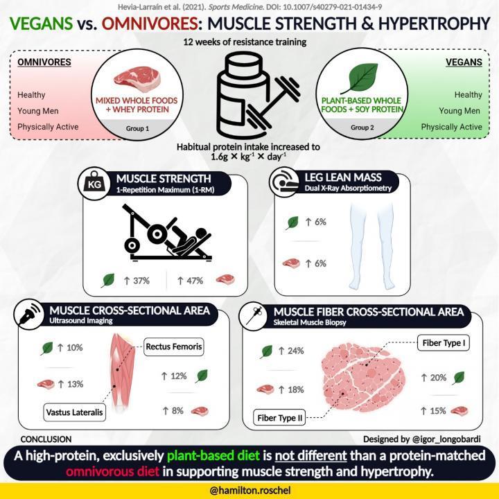 研究表明纯素食和杂食饮食可促进同等的肌肉质量增长