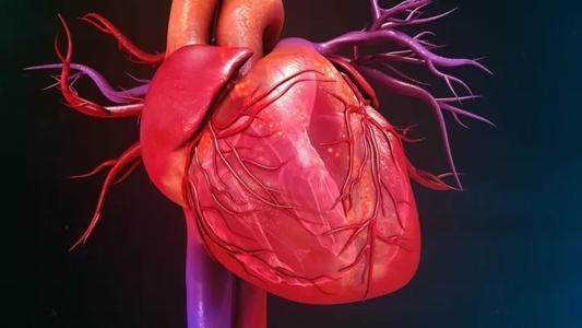 以心脏为中心的焦虑症是抑郁症的重要预测指标