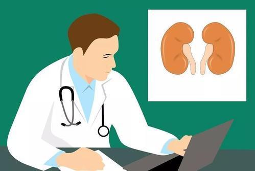 顶尖的研究成果展示了肾癌和黑色素瘤的创新进展