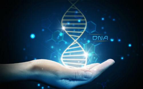 研究人员预测模型识别患者进行基因检测