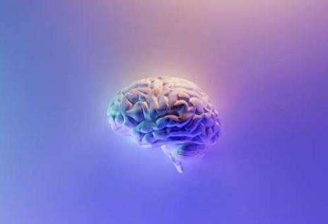 大脑的计算机模拟可以预测中风幸存者的语言恢复