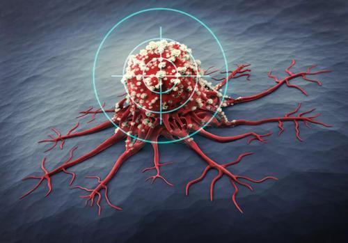 联合靶向治疗为CLL患者提供持久缓解