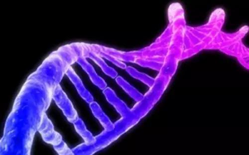 基因组测序揭示了加利福尼亚最近发生的志贺氏菌