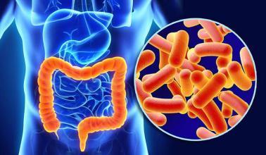 G6PD酶为自身免疫性疾病提供了有希望的治疗靶标