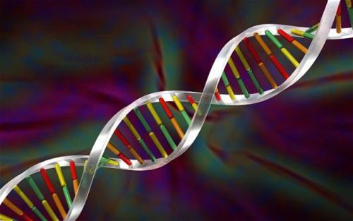 科学家已经在新型患者的粪便中检测到了新的RNA